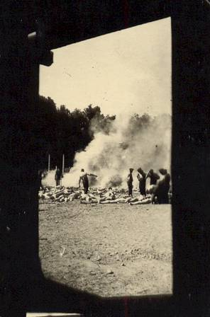 Photo taken from the doorway of a gas chamber at Auschwitz-Birkenau