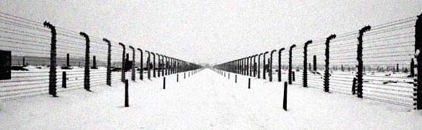 The road to the gas chambers at Auschwitz-Birkenau