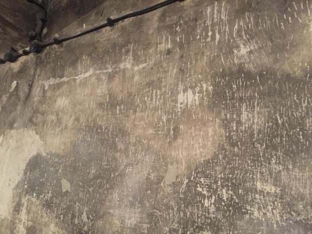 Fingernail scratches on walls of gas chamber