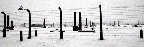 2005 photo of the remains of the Birkenau camp