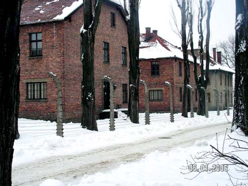 Auschwitz barracks in winter 2006 Photo Credit: José Ángel López