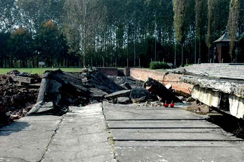 My photo of the ruins at Auschwitz-Birkenau