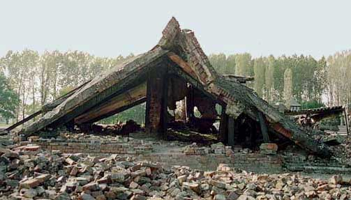 My 2005 photo of the ruins of Krema II at Birkenau