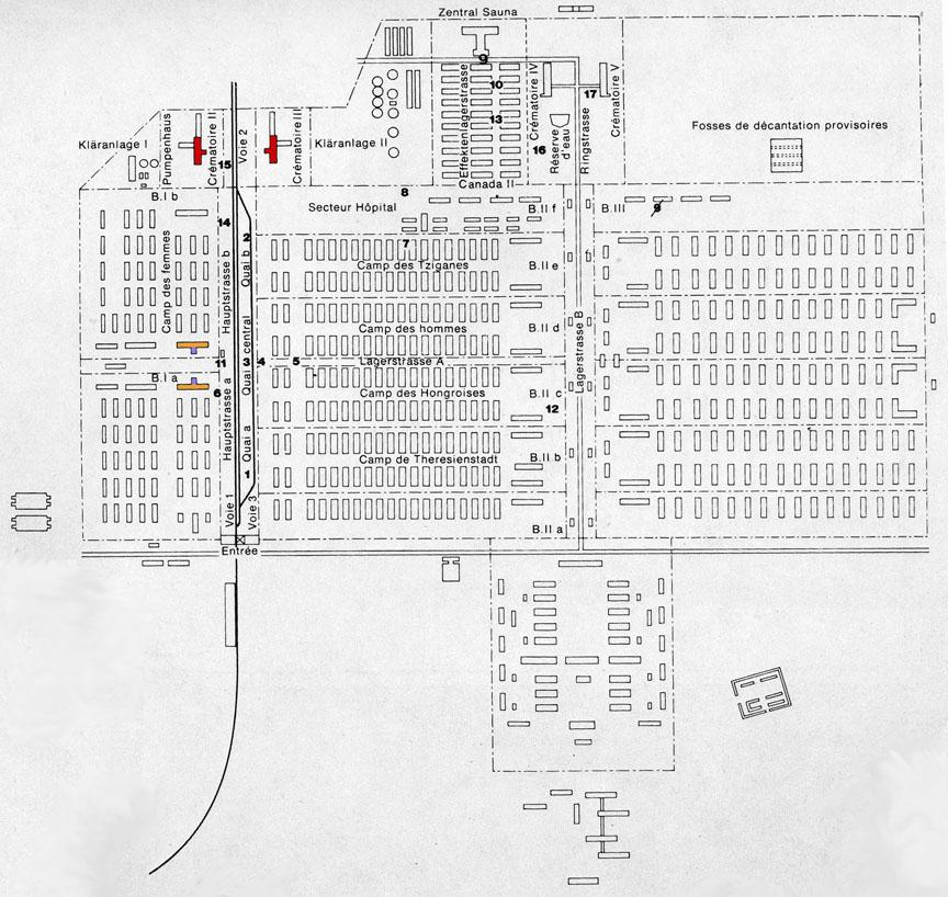 Map of the Auschwitz-Birkenau camp