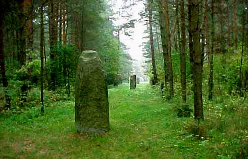 My 1998 photo shows a line of stones that mark the border of the Treblinka camp