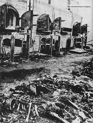 Burned bodies pulled out of the ovens at Majdanek