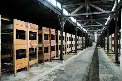 My photo of bunk beds inside an Auschwitz barrack