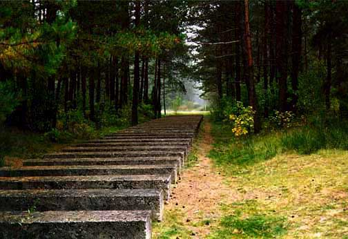 My photo of the same path at Treblinka