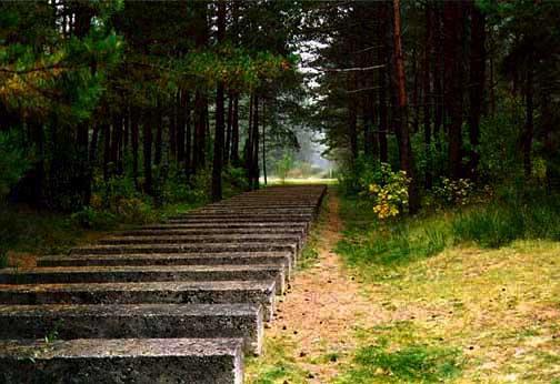 My photo of the same path at Treblinka