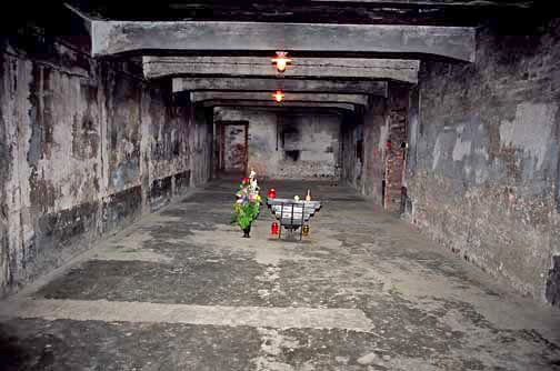 My 2005 photo of the glass door into the Auschwitz gas chamber