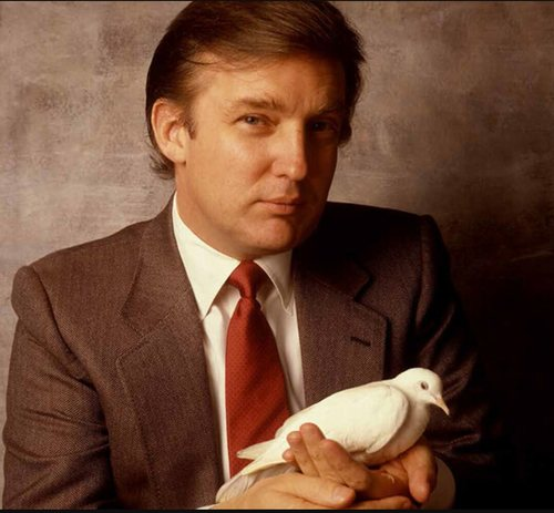 Image result for young donald trump pictures